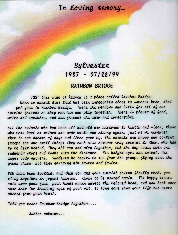 Rainbow bridge poem, Rainbow bridge and Pet loss on Pinterest