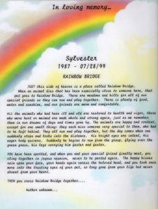 Petloss, Chat Room, Rainbow Bridge, rainbowbridge, Candle